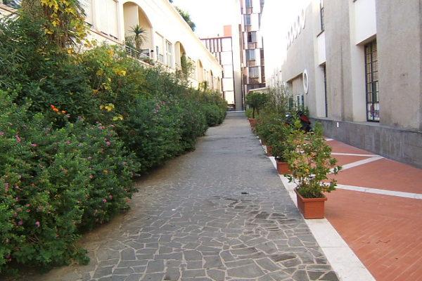 Locazione San Giovanni Piazza Lodi Ex Edificio Pantanella E 1100